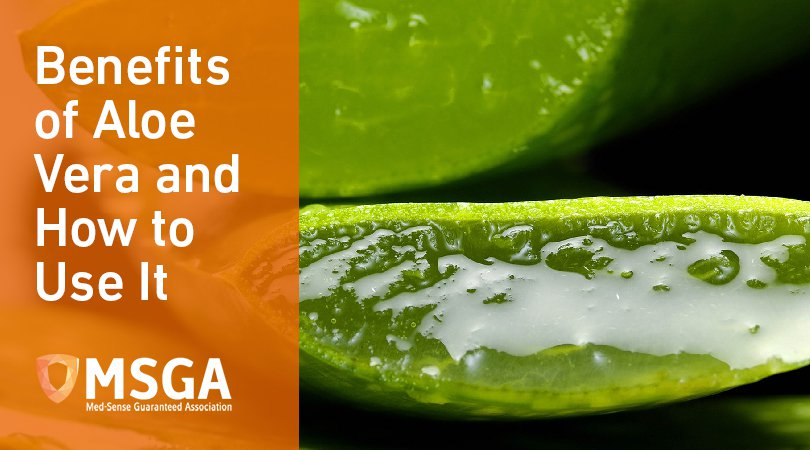 Benefits of Aloe Vera and How to Use It