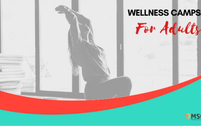 Wellness Camps for Adults